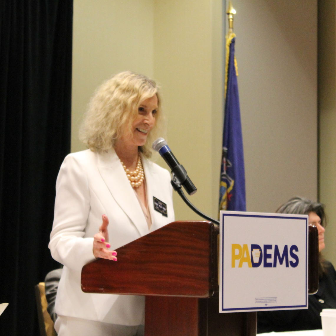 Pennsylvania Democratic Party Chairwoman Nancy Patton Mills