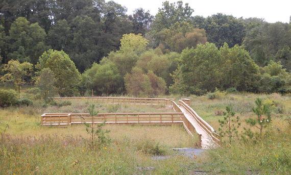 2013 spalding excursion wetland boardwalks