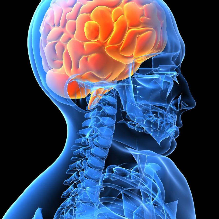 scientific philosophical studies of mind original