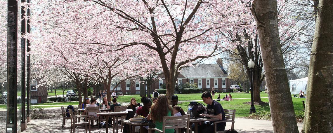 campus life spring