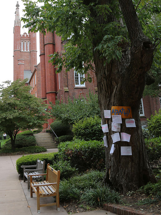Franklin & Marshall College's Protest Tree is estimated to be a century old. After years of deterioration, it is scheduled to be trimmed the week of Sept, 28.