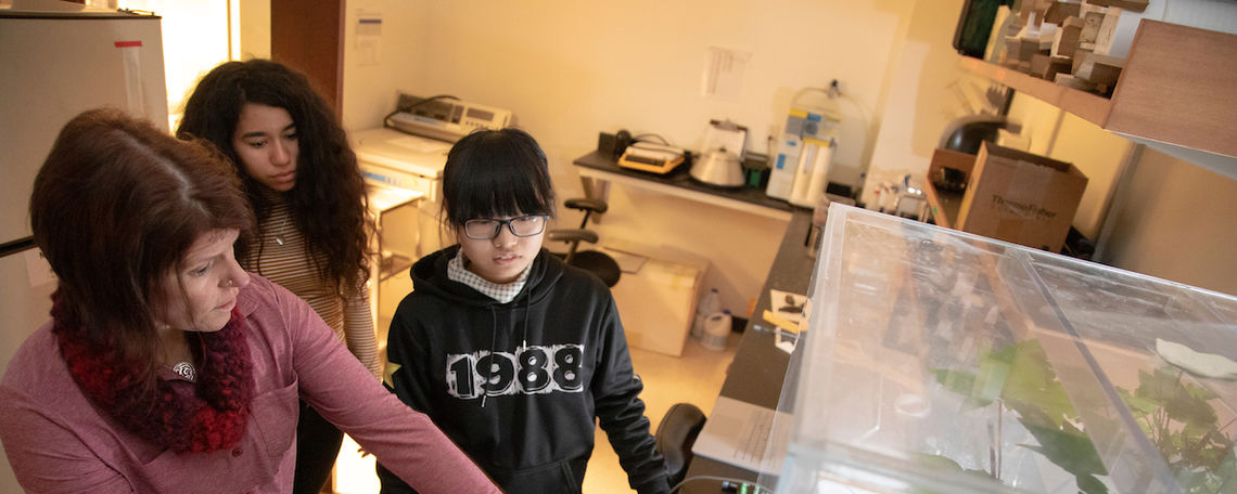 "Working with a ""fog box"" inside a campus biology laboratory with  junior Karisa (Yiting) Liu, first-year Ann Medina and Associate Professor of Biology Sybil Gotsch."