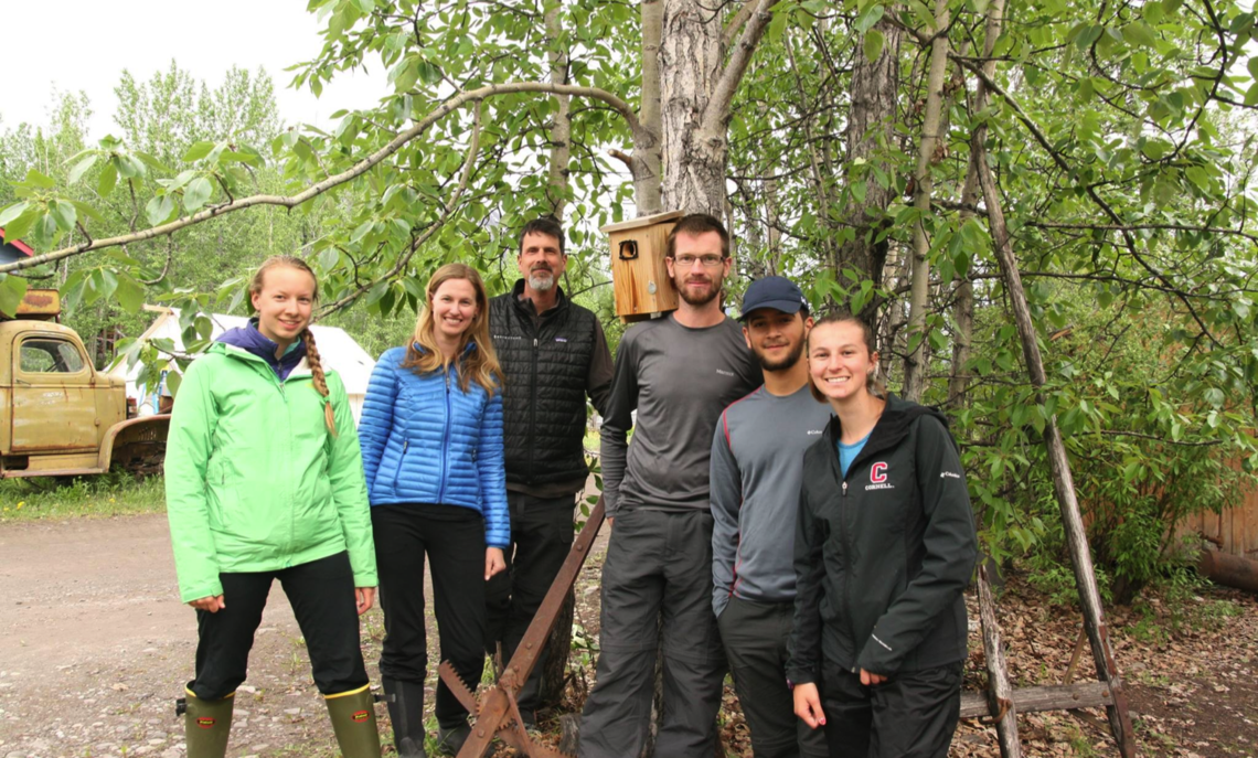 F&M Professor Ardia, behind Cornell Professor Vitousek in blue coat, is in the field with the swallow research team that includes F&M junior Rodriguez (wearing cap).