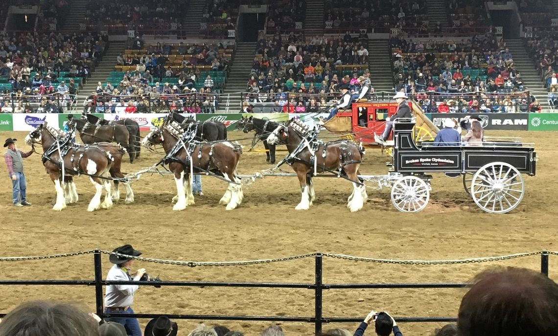F&M Alum Jack Rosenthal '06, a geoscience supervisor at DJ Resources who led several of the seminars, brought students to the National Western Stock Show to enjoy a rodeo.