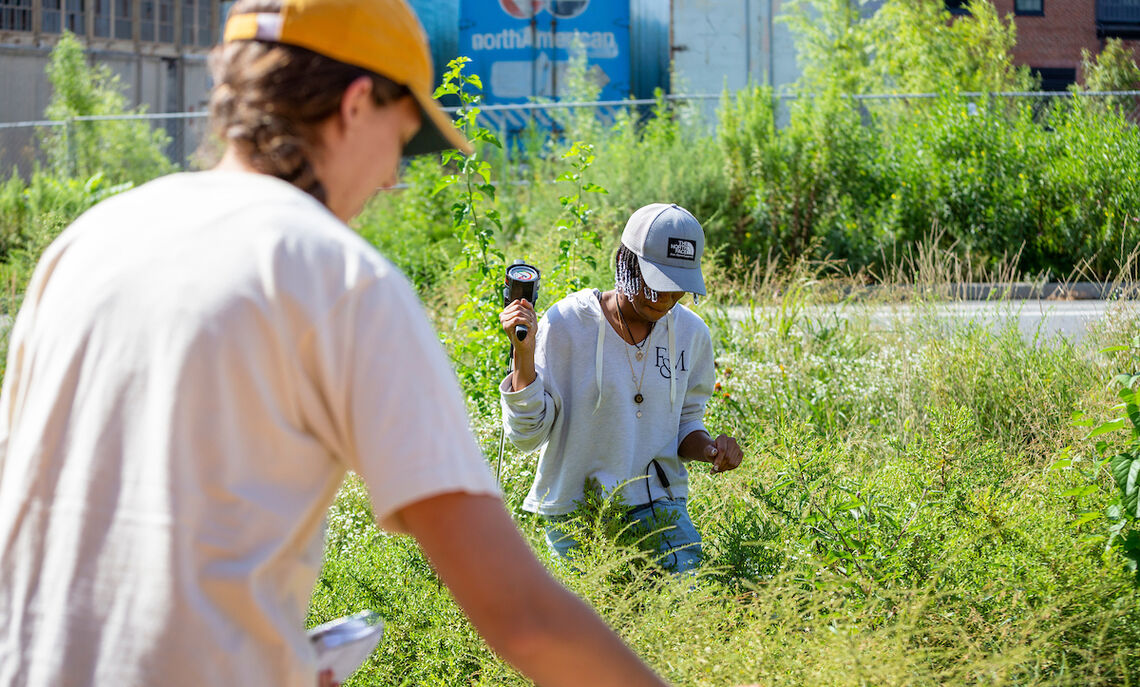 Students in Sybil Gotsch's ecohydrology lab collect data from rain gardens outside Lancaster Brewing Company in Lancaster City as part of a comprehensive study.