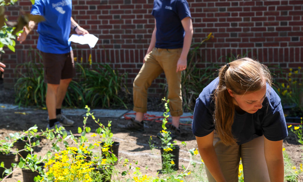 From left to right, F&M Sustainability Coordinators for Facilities and Operations Tom Simpson and Nic Auwaerter, and F&M summer worker Jackie Coccia plant along the east side of the Wohlsen Center.