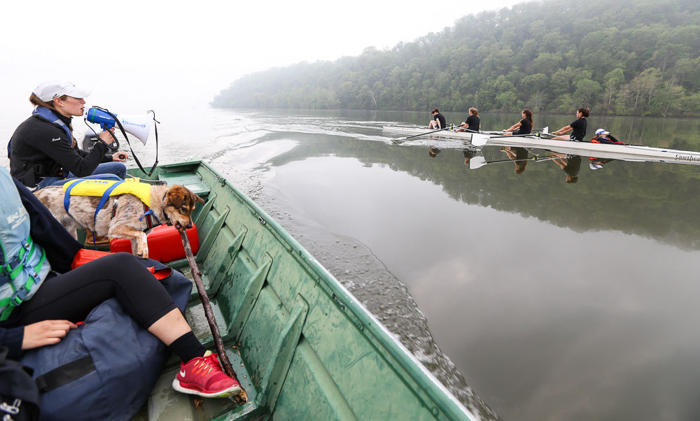 Rowing college essay
