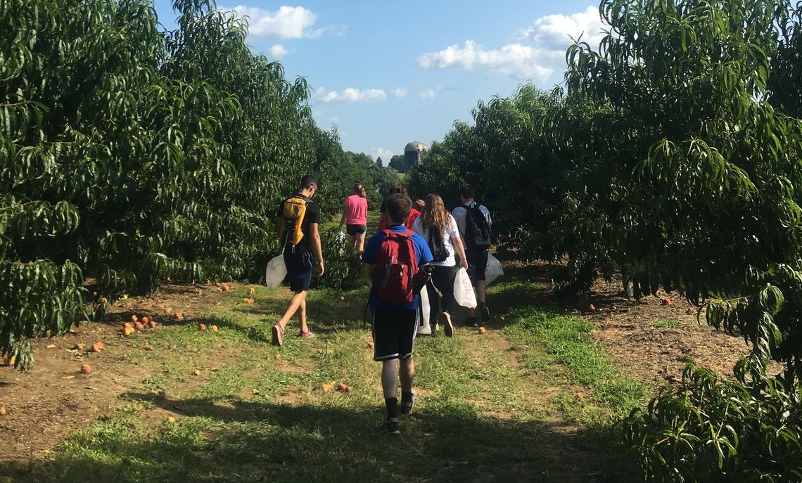 GROW 2018 at Cherry Hill Orchards