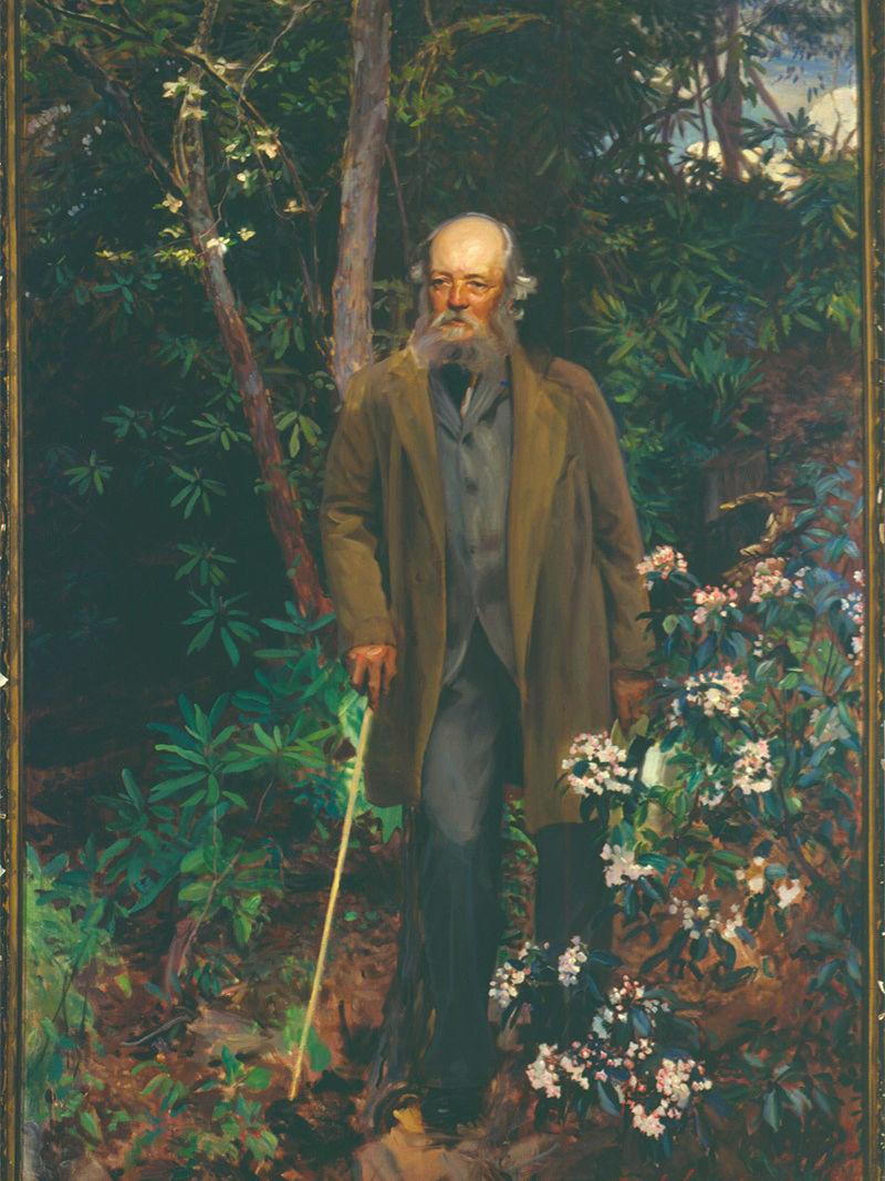 Portrait of Olmsted, John Singer Sargent, 1895.