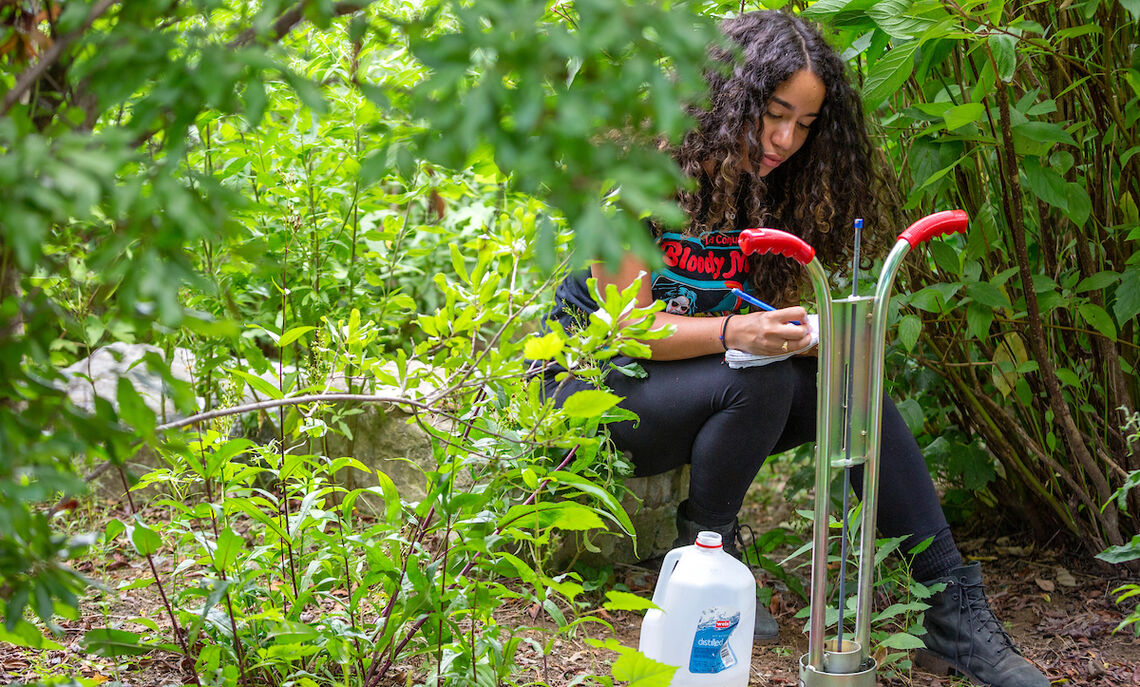Students in Sybil Gotsch's ecohydrology lab collect data from rain gardens in Lancaster City as part of a comprehensive study.