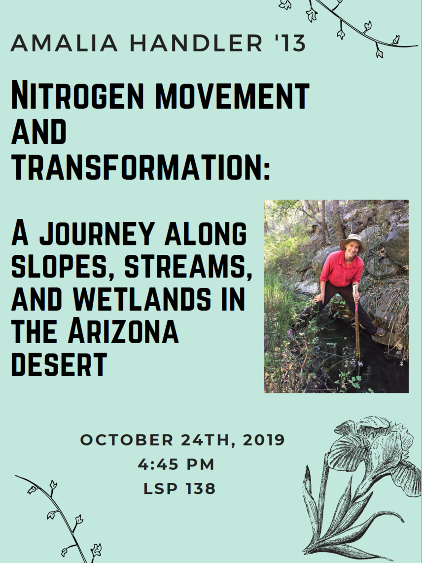A Journey Along Slopes, Streams, and Wetlands in the Arizona Desert.