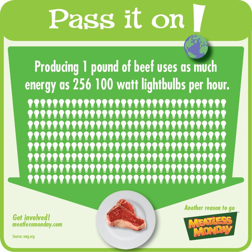 Producing Beef - Lightbulbs