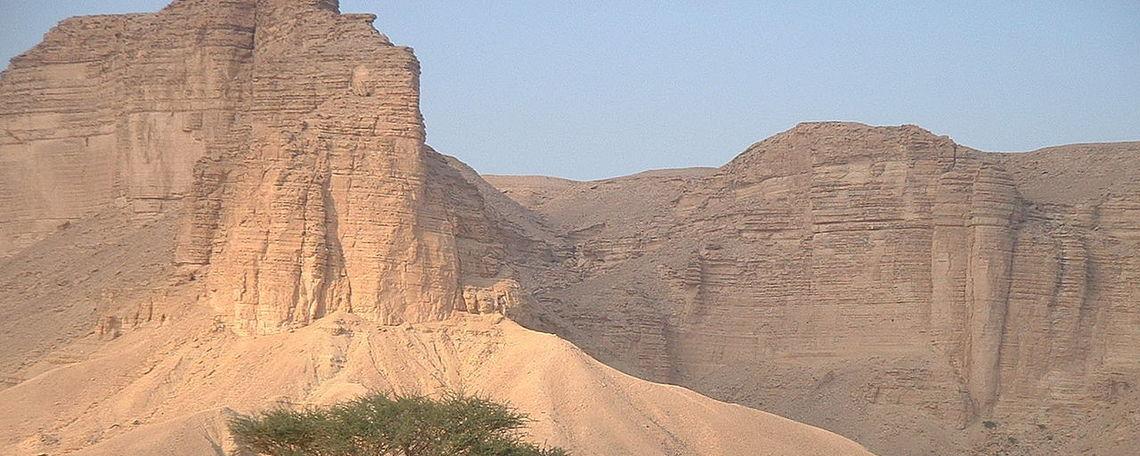Picnic area under the Tuwaik escarpment, Saudi Arabia.
