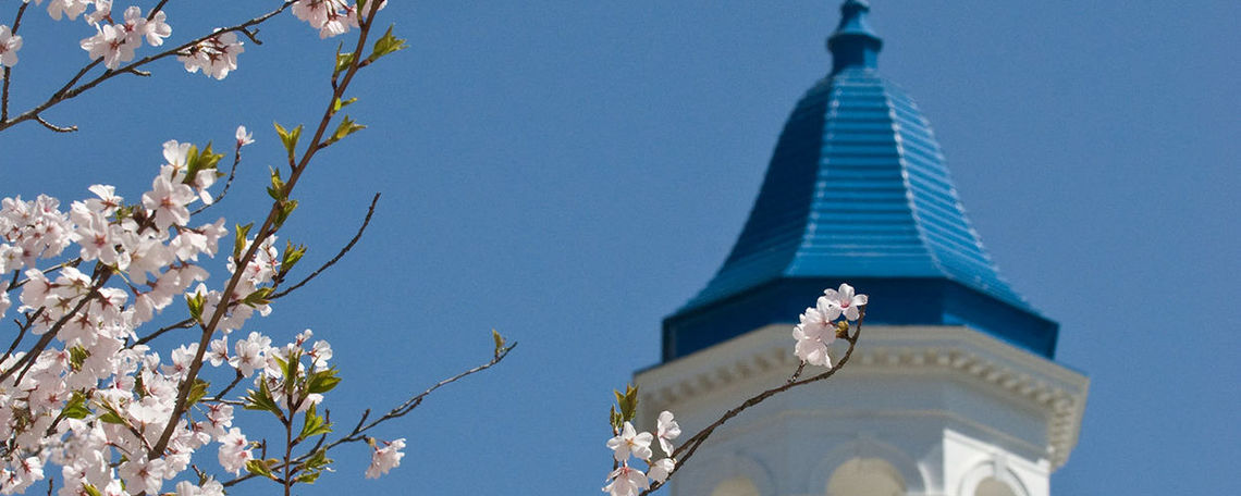Barshinger cupola in background of spring flowers