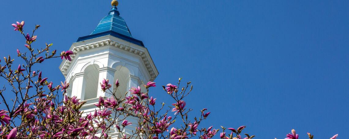 F&M campus blooms in spring
