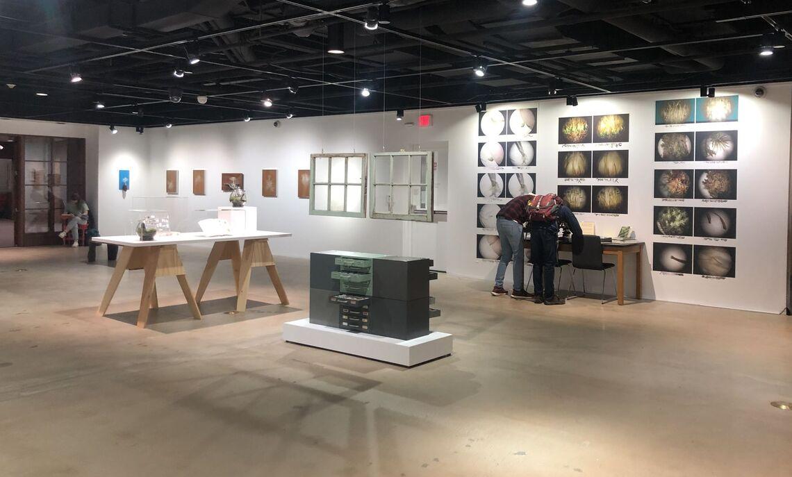 """What a Wonderful World"" Exhibition, Installation View, Spring 2020"