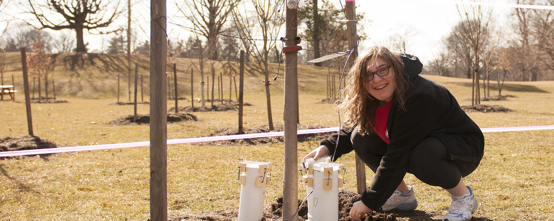 Professor Gotsch's research students studying what trees in urban settings can absorb storm-water runoff.
