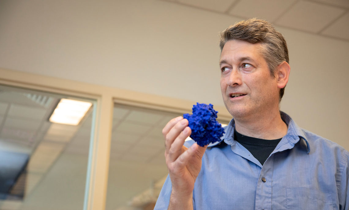 Brandt holds one result of his collaboration with Fields: a 3D model of the first atomic structure of a protein from the coral genus Acropora.