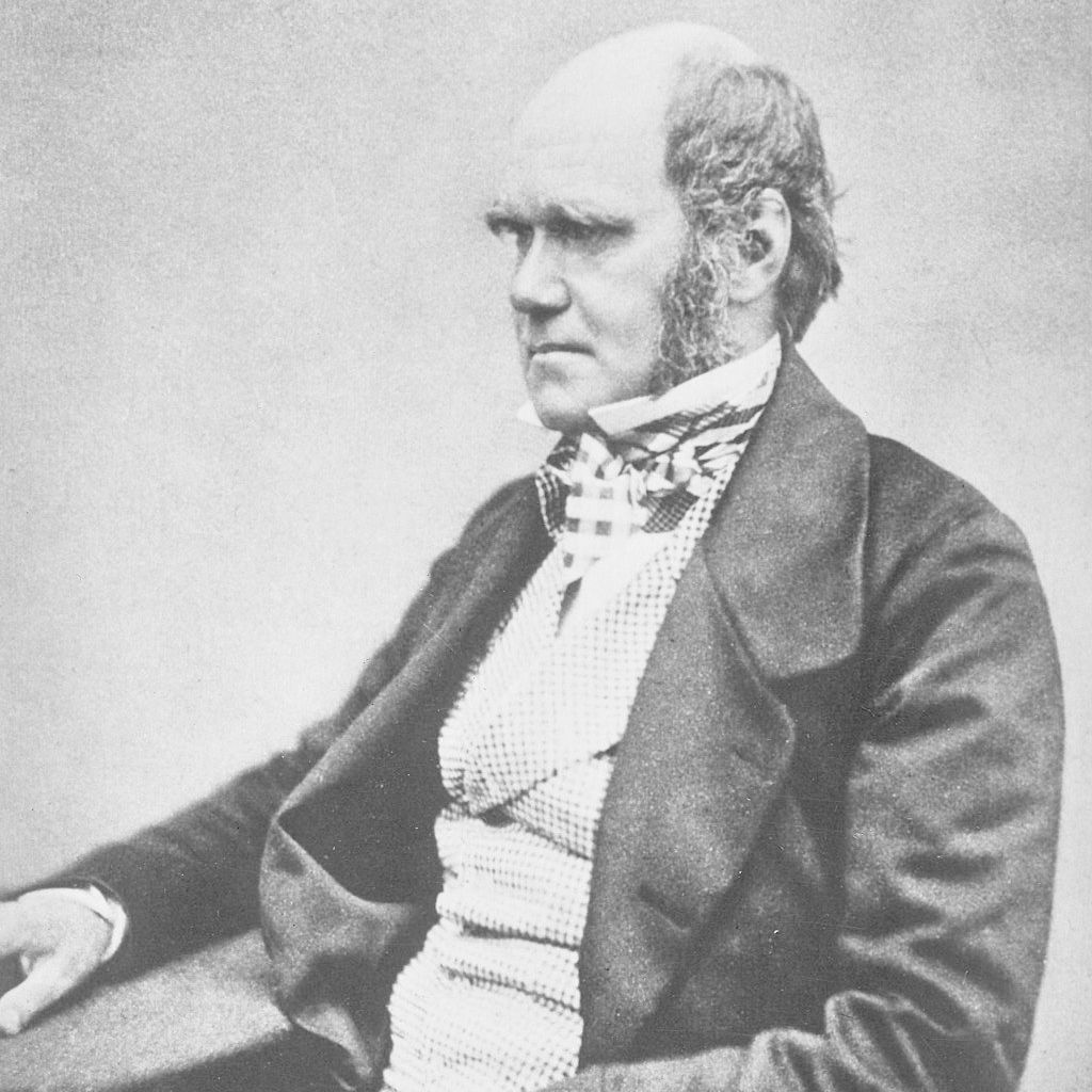 """Charles Darwin, during the period he was trying to publish """"Origin of Species."""""""