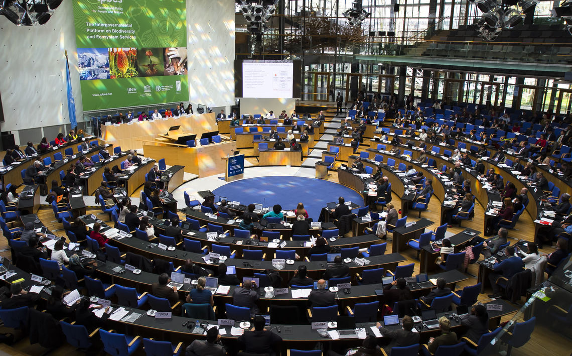 Delegates discuss environmental policies at the United Nations conference in Bonn.