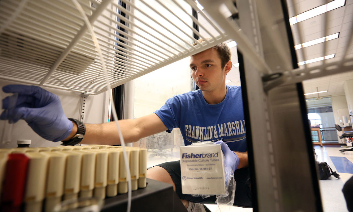 A biochemistry and molecular biology major, Cody Kalinoswki '18 works on purifying protein samples for the research.