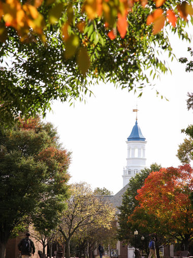 Cupola in Fall