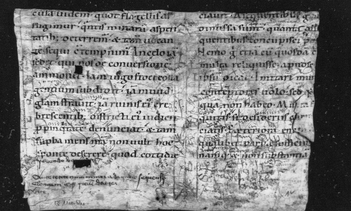 "The manuscript O'Bryhim used the ""Manuscript Illuminator"" on at the Ruprecht-Karls University of Heidelberg library."