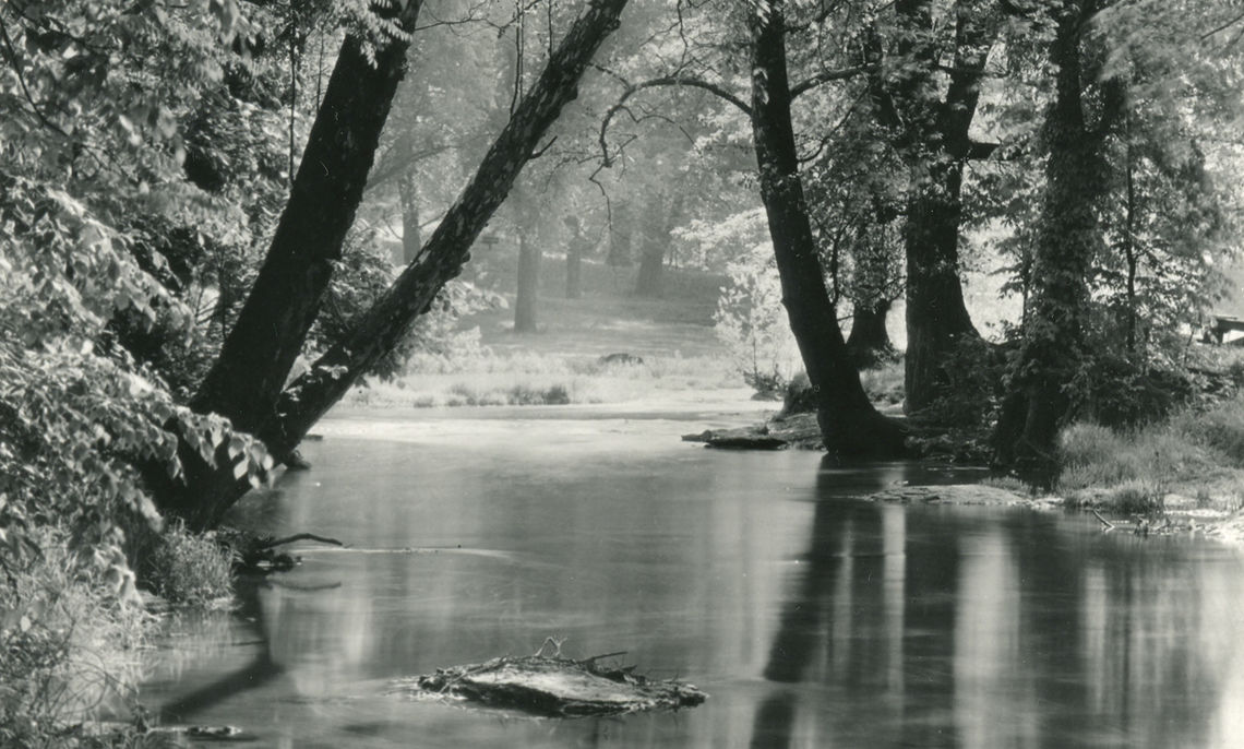 View Along Creek, Cherokee Park, Louisville, Kentucky.