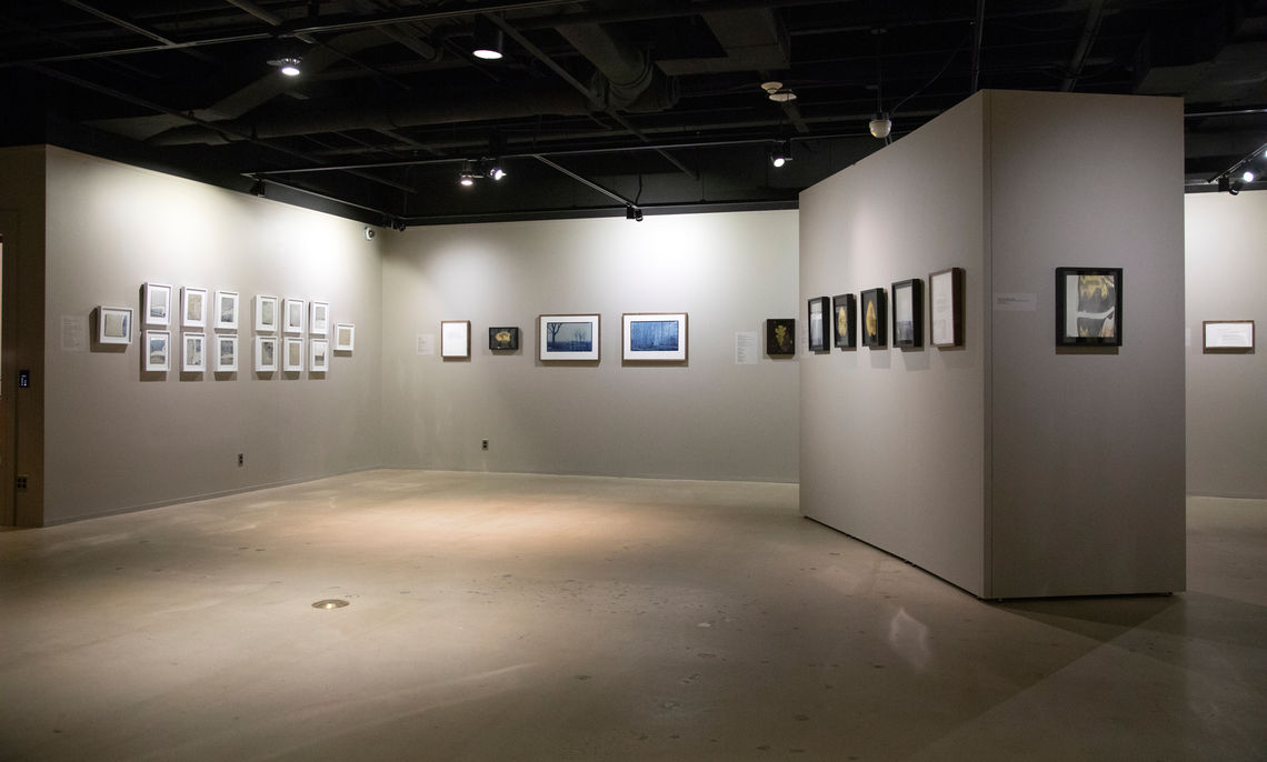 "Photograph of the Rothman Gallery during the exhibition ""War Memoranda: Photography, Walt Whitman, and Memorials,"" Photograph by Deb Grove, Art Courtesy of the artists Binh Danh and Robert Schultz, Images from the Liljenquist Family Collection of Civil War Photograph"