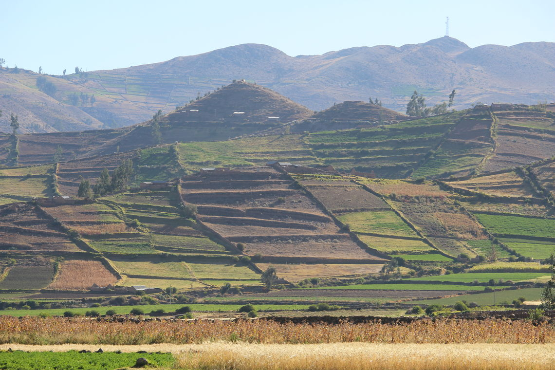 Andean Peru