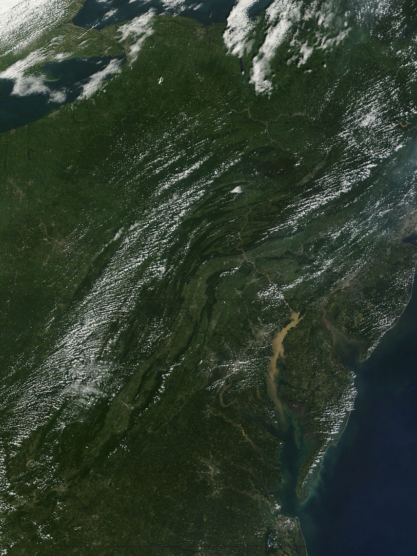 Runoff! Satellite imagery following Tropical Storm Lee in 2011 shows the enormous amount of sediment carried by rivers and streams into the Chesapeake Bay. Other pollution and algae blooms adversely affect the bay's native wildlife.