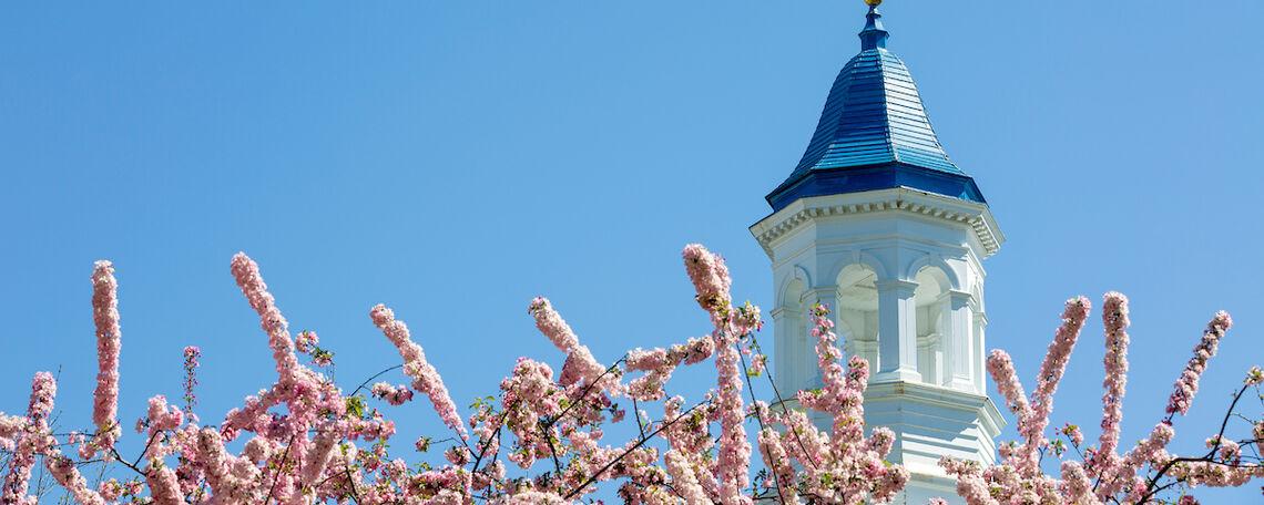 Campus cupola