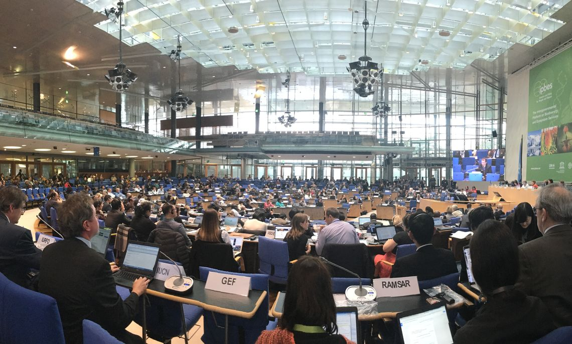 IPBES Plenary-5, Bonn, Germany 2017.