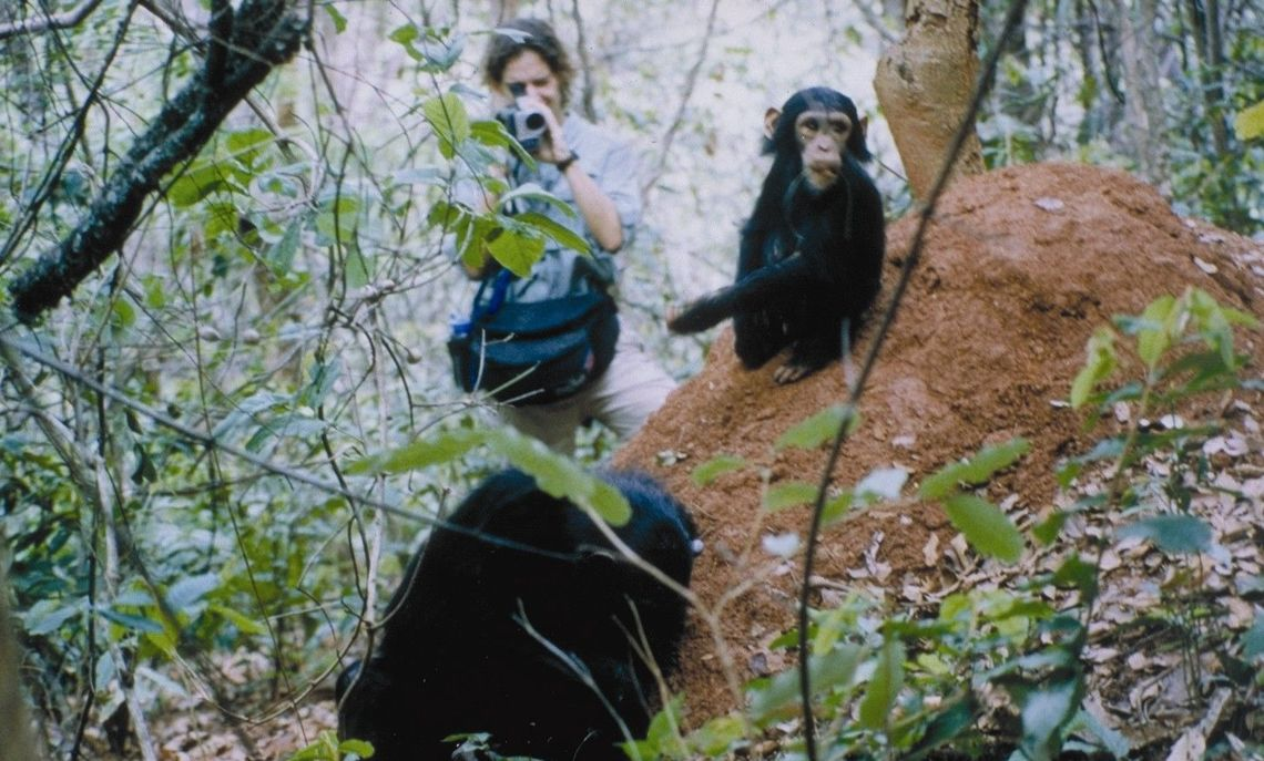 Elizabeth Lonsdorf, associate professor of psychology at Franklin & Marshall College, has long studied (and photographed) chimpanzees at Gombe Stream Research Center in Tanzania.