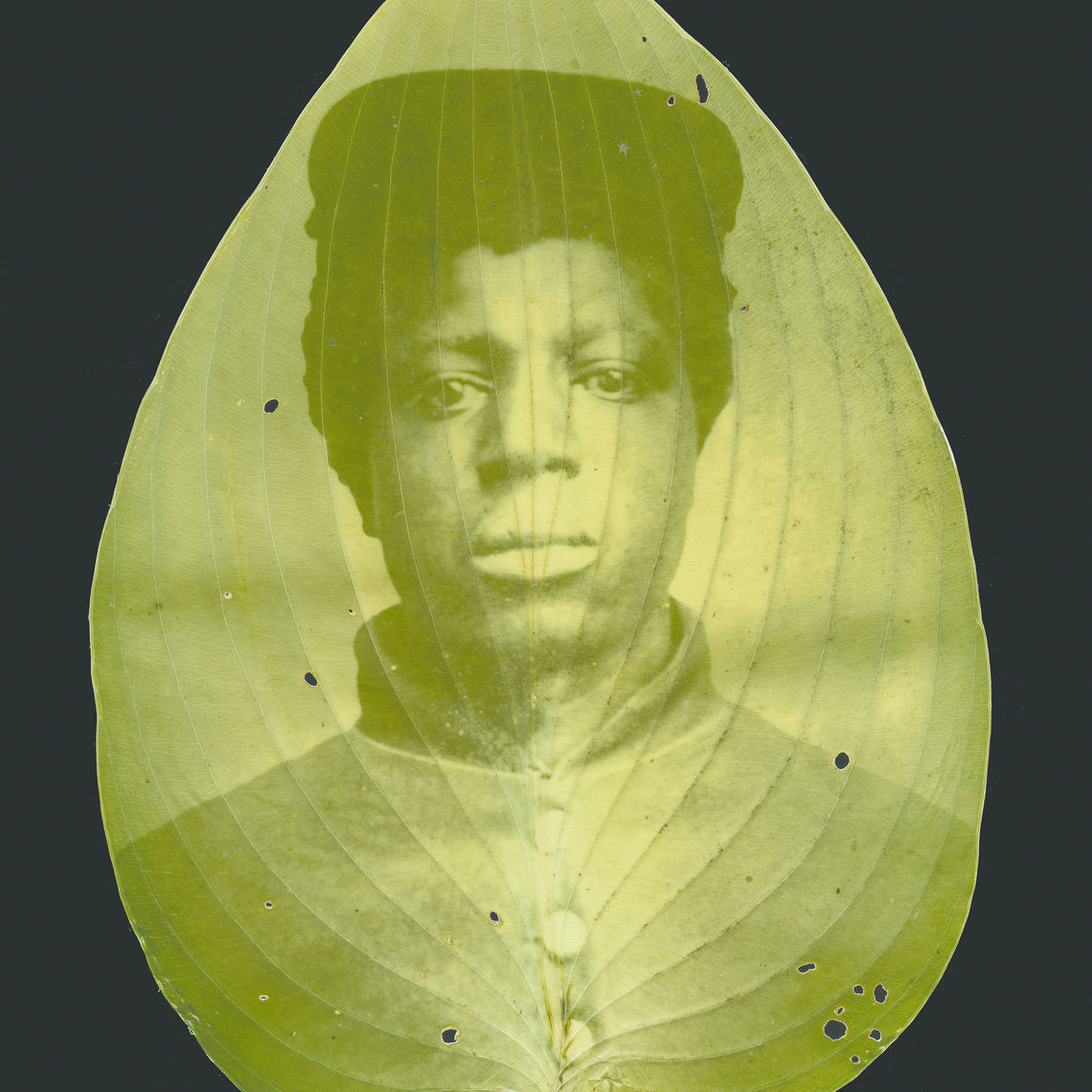 "A soldier's image imposed on a leaf, one of the ""War Memoranda"" exhibits."