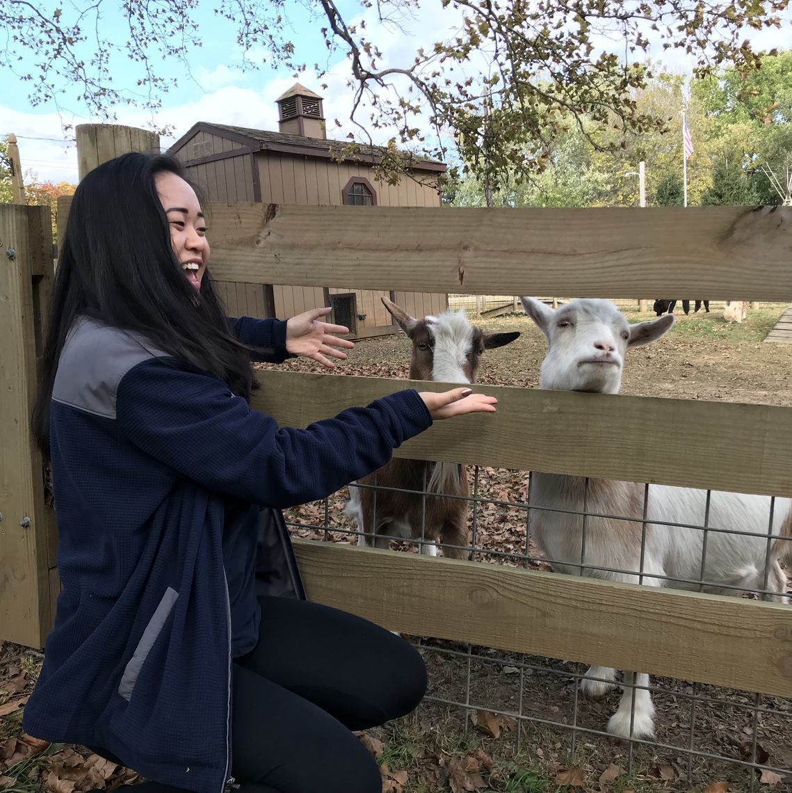 A photo of Sarah smiling and reaching out to pet two goats.
