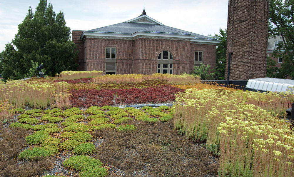 Green roofs on locations around campus, including the Wohlsen Center for the Sustainable Environment shown here, reduce energy required to cool and heat buildings, and retain water to decrease runoff during rainstorms. Goals of Franklin & Marshall's Sustainability Master Plan include reducing energy consumption 15 percent by 2020 and containing 100 percent of the stormwater produced on campus by 2030. (Photo by Tim Brixius)