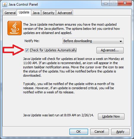 Java update auto check
