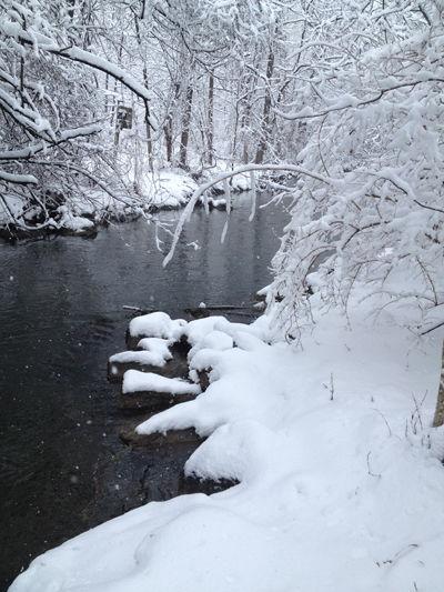 Winter at Millport