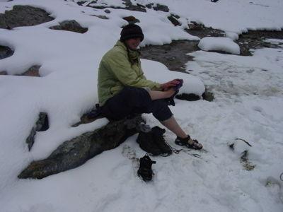 images-departments-biology-organisms-jmf-snow-jpg